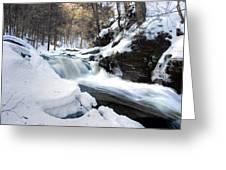 Winter Meltdown Rushing Over Conestoga Falls Greeting Card by Gene Walls