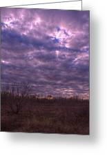 Winter Mood Greeting Card by Kelly Kitchens