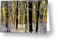 Winter Mood Lighting Greeting Card