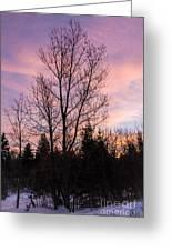 Winter Morning Sky Greeting Card
