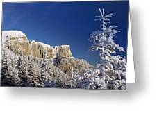 Winter Mountain Landscape Greeting Card