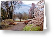 Winter Nature Greeting Card