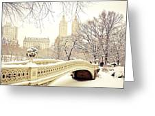 Winter - New York City - Central Park Greeting Card by Vivienne Gucwa