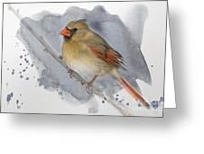 Winter Northern Cardinal Greeting Card