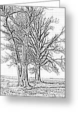 Winter Oaks IIi Greeting Card