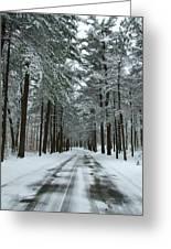 Winter On Mohegan Park Road Greeting Card