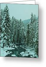 Winter On The American River Greeting Card