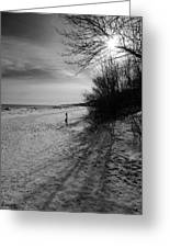 Winter On The Beach  Greeting Card