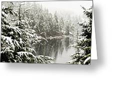 Winter On The Coast Greeting Card