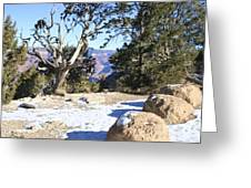 Winter On The South Rim Greeting Card