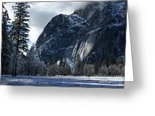 Winter On The Valley Floor Greeting Card