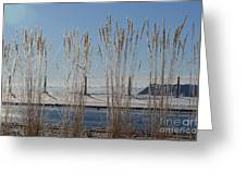 Winter Parade Greeting Card