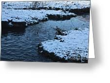 Winter Park 4 Greeting Card