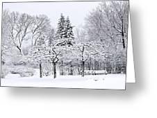Winter Park Landscape Greeting Card