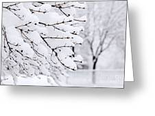 Winter Park Under Heavy Snow Greeting Card