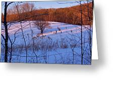 Winter Pasture Sunset Greeting Card