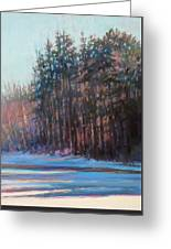 Winter Pines Greeting Card by Ed Chesnovitch