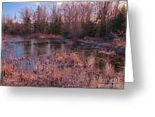 Winter Pond Landscape Greeting Card