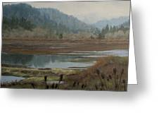 Winter Pond Greeting Card