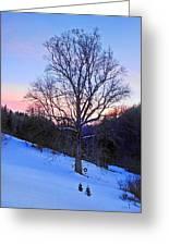 Winter Poplar Tree Greeting Card