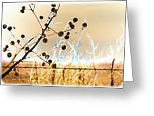 Winter Prairie Greeting Card