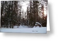 Winter Quiet Greeting Card
