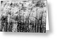 Winter Reeds Greeting Card