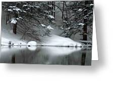 Winter Reflection 004 Greeting Card