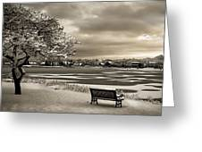 Winter Rest Greeting Card