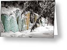 Winter Revelation Greeting Card