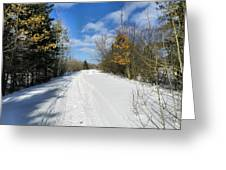 Winter Scape 5 Greeting Card