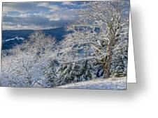 Winter Scene At Berry Summit Greeting Card