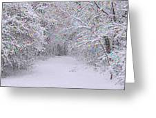 Winter Scene With Lights Greeting Card