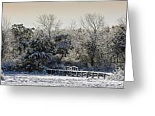 Winter Scenes Greeting Card
