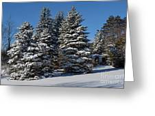Winter Scenic Landscape Greeting Card