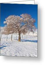 Winter Season On The Plains Portrait Greeting Card