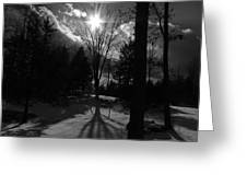Winter Shadow Greeting Card