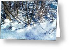 Winter Shadows Greeting Card