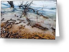 Winter Shore At Barr Lake_2 Greeting Card by Tom Potter