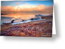 Winter Shore Greeting Card