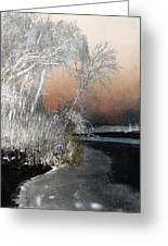 Winter Shroud Greeting Card
