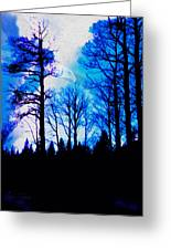 Winter Silhouettes - Ghost Eagle Greeting Card