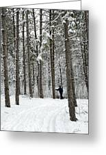 Winter Ski Greeting Card