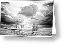 Winter Sky Drama Greeting Card