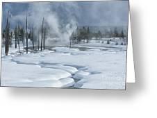 Winter Solitude Greeting Card by Sandra Bronstein