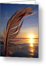 Winter Solstice 2011 Greeting Card