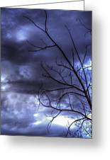 Winter Storm 2 Greeting Card