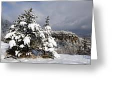 Winter Storm On Natural Bridge - D001598 Greeting Card