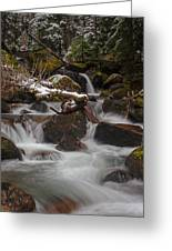 Winter Stream Tranquility Greeting Card