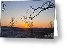 Winter Sun Ornament Greeting Card